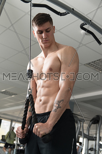 Man In The Gym Exercising On His Triceps On Machine With Cable In The Gym