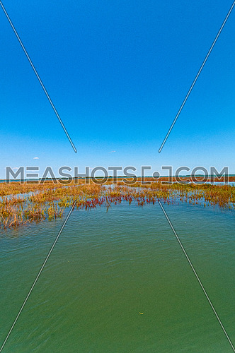 Venice Italy lagune view of the barena where the fresh water and sea water mix