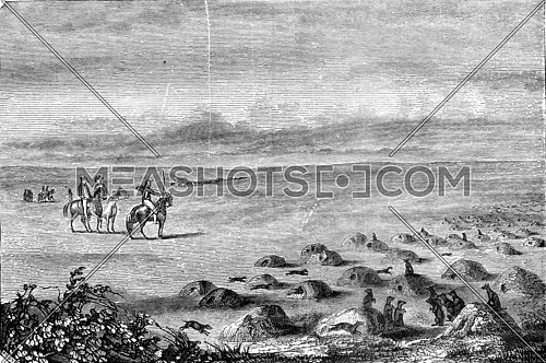 New Mexico, City of Dogs, vintage engraved illustration. Magasin Pittoresque 1845.