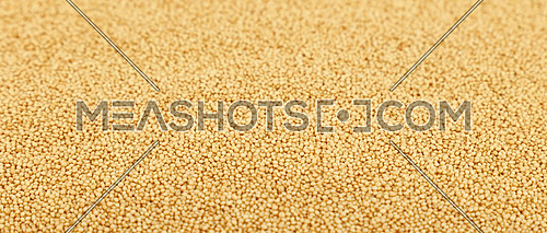 Amaranth grain seeds close up pattern background, high angle view, selective focus