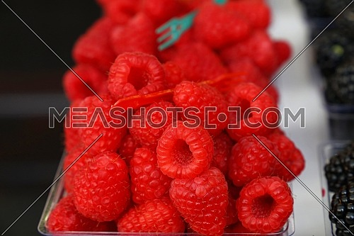 Close up fresh red ripe raspberry berries in plastic container boxes on retail display of farmers market, high angle view