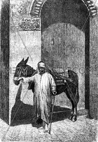 Vehicles of the great Sahara. The donkey driver is usually a beautiful negro, vintage engraved illustration. Journal des Voyages, Travel Journal, (1879-80).