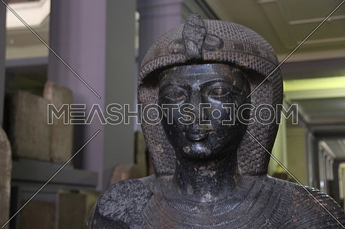 a photo from inside the Egyptian museum showing a face and statue of an ancient Egyptian pharaoh