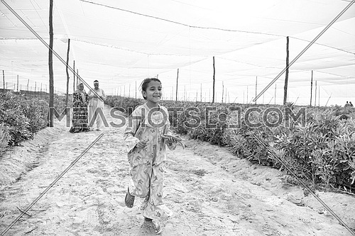 young middle eastern girl enjoying with their parents and run the farm with green beans in hands