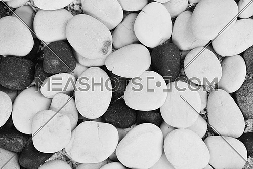 white and grey stones on the ground on a tropical beach