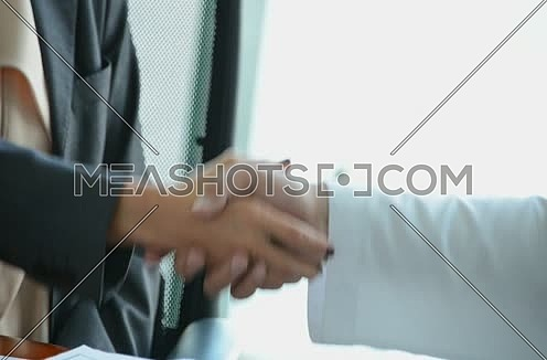 business people handshaking in conference room