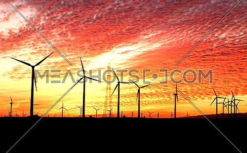 Windmills in desert @ sunset - silhouette - with cloud patterns - Cairo Hurghada road - Egypt