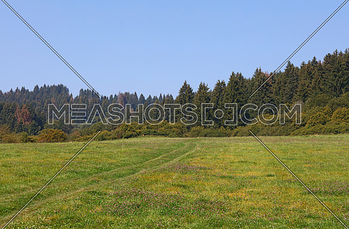 Beautiful tranquil rural scene landscape with green meadow field, forest and cloudy blue sky