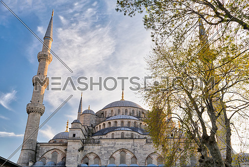 Exterior low angle day shot of domes of Sultan Ahmed Mosque (Blue Mosque), an Ottoman imperial mosque located in Sultan Ahmed Square, Istanbul, Turkey