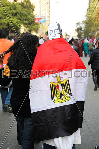 A man wearing the Egyptian flag and Ahmed Harara Martyr Mask on 25 Jan 2012
