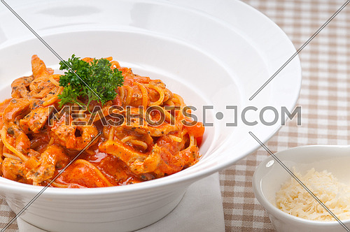 Italian spaghetti pasta with tomato and chicken sauce
