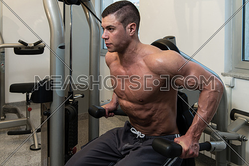 Young Physically Bodybuilder Working Out Triceps On Machine