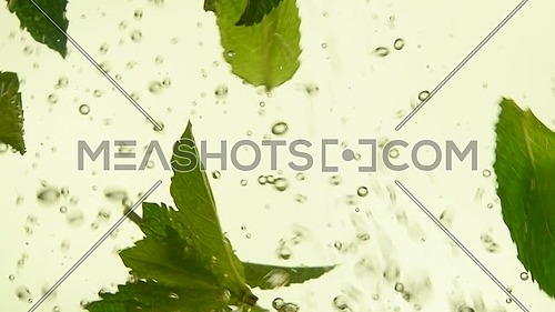 Close up several fresh green mint leaves floating in tea with air bubbles, low angle side view, slow motion