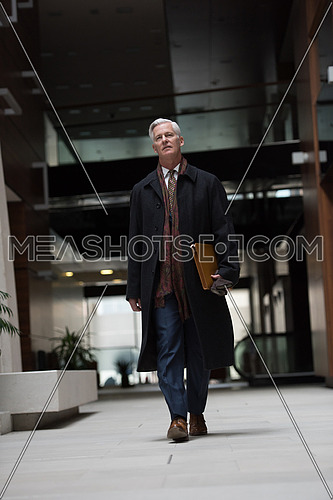 handsome and sucessful senior business man walking in modern office interior