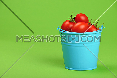 Small disproportional blue bucket of red cherry tomatoes over green background, close up