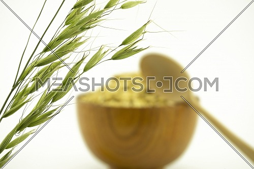Green ear of oats with blurred bowl of cereal in the background isolated on white with copy space and spoon in a healthy diet concept