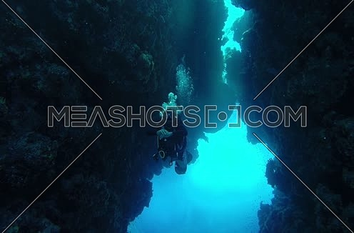 Follow shot for scuba divers and hard coral colony underwater at The Red Sea