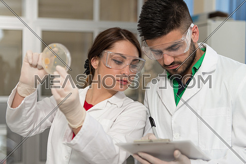 Group Of Scientists Conducting Research In A Lab Environment