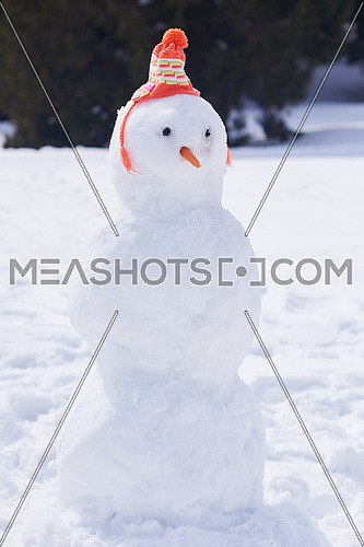 snowman in winter snow nature scene