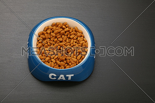 Brown dry cat food in blue and white ceramic bowl with cat word on black floor, close up, high angle view, personal perspective