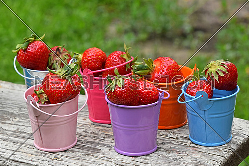 Several small colorful multicolored metal toy buckets full of red mellow strawberries on old vintage wooden table over green grass, close up