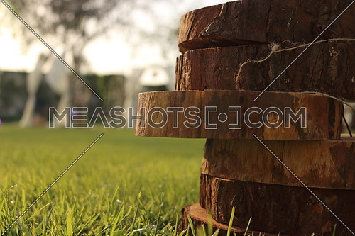 pieces of wood stacked on top of each other in a garden (Copy Space)