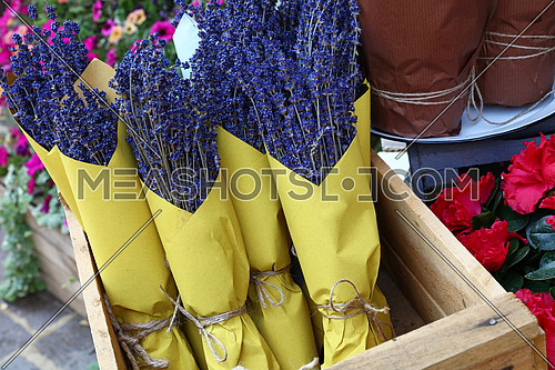 Close up bouquets of dried lavender flowers wrapped in yellow paper at retail display of flower shop