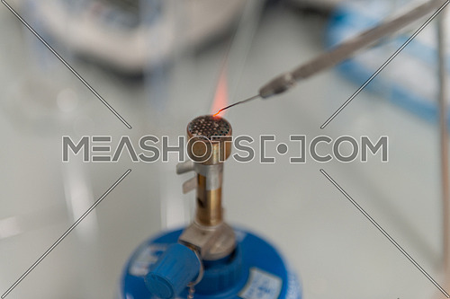 Close Up Of Scientist Hand During Scientific Experiment In Laboratory