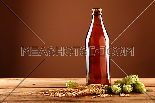 Close up one full unopen unlabeled brown glass bottle of beer, green hops, barley grain and spikes on wooden table, low angle side view
