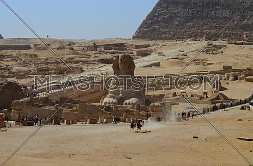 Fixed shot for the sphinx in Giza at day