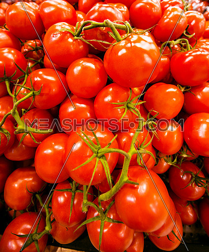 Red tomato bunch