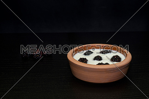 a pottery bowl  filled with yogurt and blackberries
