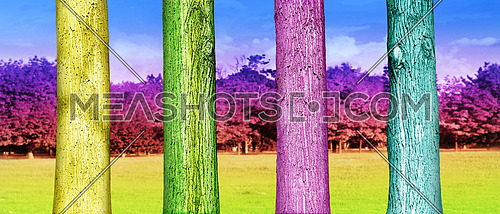 Colorfull Tree Trunks in the Park. Abstract Psychedelic Colors