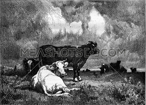 La Falaise, painting by Van Marcke, vintage engraved illustration. Magasin Pittoresque 1877.