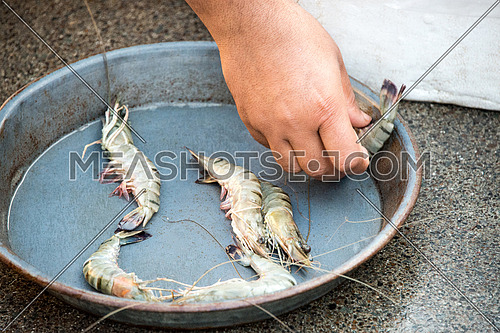 a close up of a man's hand puting prawns in a pan