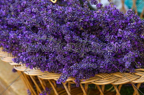 Close up fresh purple lavender flowers in wooden basket on retail display in Provence, France