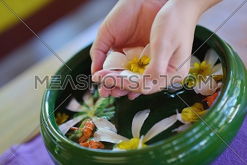 spa and beauty female hand and flower in water