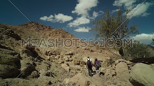 Long shot for group of tourists walking big rocks, with bedouin guide to explore Sinai Mountain for wadi Freij at day.