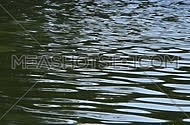 Ripples and waves running on green water surface, moving flow background, Full HD 1080