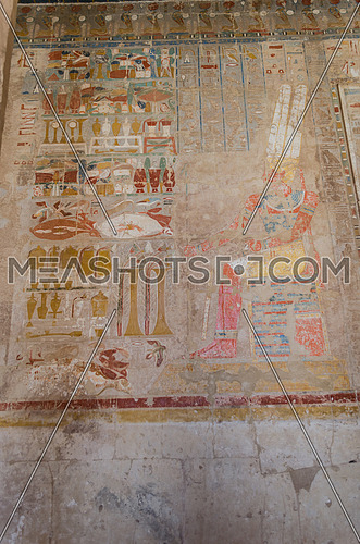 old pharaoh drawings and hieroglyphics of king and queen in colors