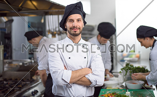 Portrait of young chef standing in commercial kitchen at restaurant