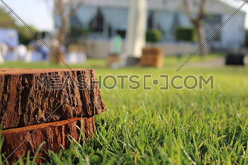 wood pieces stacked on grass (copy space)