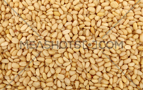Whole white peeled pine nuts (cedar, pignolia, pinon) on retail market, close up, background, high angle, elevated top view