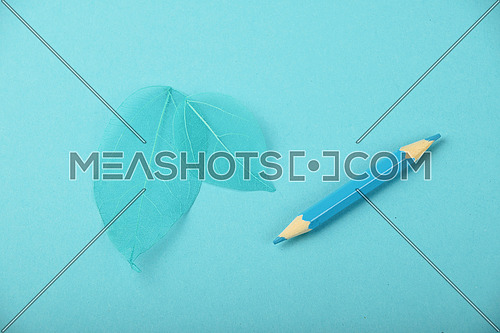 Small blue pencil and two teal skeleton leaves over design paper background