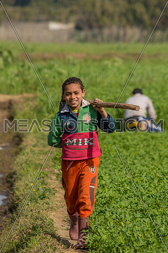 A boy in a Farm holding a axe